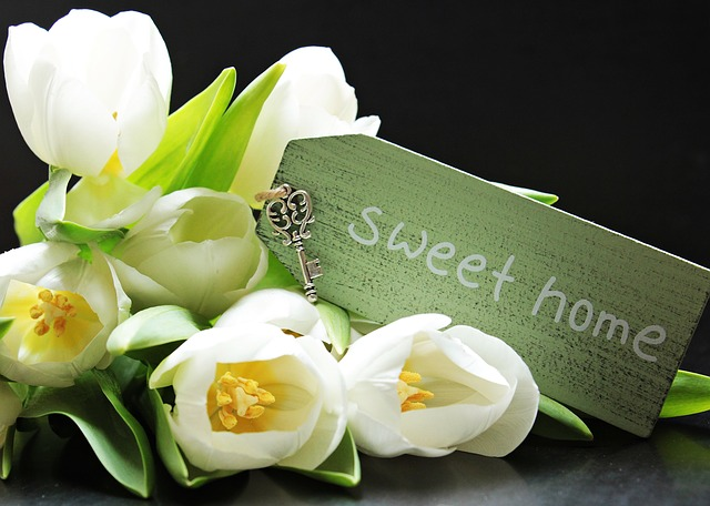 tulipány a sweet home
